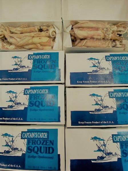 California Squid Box