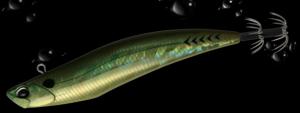 Duo D-squid 95 Baggy Green