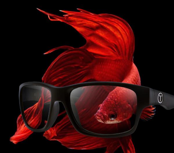 Tonic polarised Sunglasses Cover